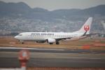 フレッシュマリオさんが、伊丹空港で撮影した日本航空 737-846の航空フォト(写真)