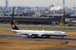 こだしさんが、羽田空港で撮影したルフトハンザドイツ航空 A340-642の航空フォト(写真)