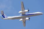 Amaizing787さんが、熊本空港で撮影したANAウイングス DHC-8-402Q Dash 8の航空フォト(写真)