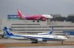 NH642さんが、福岡空港で撮影したピーチ A320-214の航空フォト(写真)