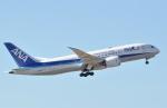fortnumさんが、成田国際空港で撮影した全日空 787-881の航空フォト(写真)
