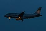Simeonさんが、羽田空港で撮影したエイビエーション・リンク・カンパニー A319-111の航空フォト(写真)
