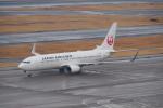 GirlsGenerationさんが、羽田空港で撮影した日本航空 737-846の航空フォト(写真)