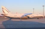べガスさんが、中部国際空港で撮影したアントノフ・エアラインズ An-124 Ruslanの航空フォト(写真)