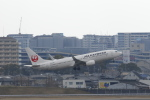 Gpapaさんが、伊丹空港で撮影した日本航空 737-846の航空フォト(写真)