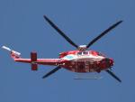 丸めがねさんが、調布飛行場で撮影した静岡市消防航空隊 412EPの航空フォト(写真)