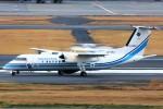 ばっきーさんが、羽田空港で撮影した海上保安庁 DHC-8-315Q MPAの航空フォト(写真)