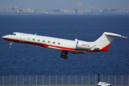 ハンバーグ師匠さんが、羽田空港で撮影した不明 Gulfstream Aerospaceの航空フォト(写真)