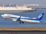チャーリーマイクさんが、羽田空港で撮影した全日空 737-881の航空フォト(写真)
