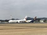 ocean falconさんが、鹿児島空港で撮影した日本航空 767-346/ERの航空フォト(写真)