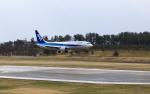 ひげじいさんが、庄内空港で撮影した全日空 737-881の航空フォト(写真)