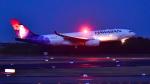 パンダさんが、成田国際空港で撮影したハワイアン航空 A330-243の航空フォト(写真)
