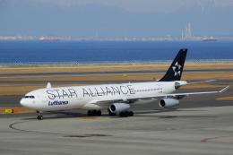 せせらぎさんが、中部国際空港で撮影したルフトハンザドイツ航空 A340-313Xの航空フォト(写真)