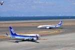 金魚さんが、中部国際空港で撮影した全日空 737-781の航空フォト(写真)