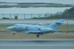 camelliaさんが、那覇空港で撮影した航空自衛隊 U-125A(Hawker 800)の航空フォト(写真)