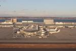 TAOTAOさんが、中部国際空港で撮影したエティハド航空 A330-243の航空フォト(写真)