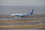 GirlsGenerationさんが、羽田空港で撮影した全日空 737-881の航空フォト(写真)