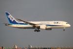 まえちゃさんが、羽田空港で撮影した全日空 787-881の航空フォト(写真)
