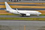 Cape_Eagleさんが、羽田空港で撮影したホンコン・ジェット 737-73W BBJの航空フォト(写真)