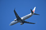 we love kixさんが、関西国際空港で撮影した日本航空 737-846の航空フォト(写真)
