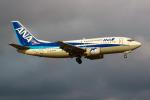 まくろすさんが、成田国際空港で撮影したANAウイングス 737-54Kの航空フォト(写真)