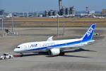 さくらの城南山。さんが、羽田空港で撮影した全日空 787-881の航空フォト(写真)