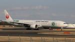 raichanさんが、成田国際空港で撮影した日本航空 777-346/ERの航空フォト(写真)