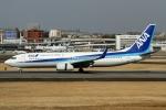 RJFT Spotterさんが、伊丹空港で撮影した全日空 737-881の航空フォト(写真)
