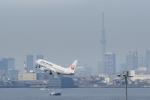 さとさとさんが、羽田空港で撮影した日本航空 737-846の航空フォト(写真)