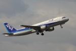 EXIA01さんが、中部国際空港で撮影した全日空 A320-211の航空フォト(写真)