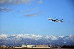 なないろさんが、富山空港で撮影した全日空 737-881の航空フォト(写真)