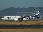 Dogma13463さんが、伊丹空港で撮影した全日空 787-881の航空フォト(写真)