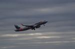SOMAさんが、成田国際空港で撮影したジェットスター・ジャパン A320-232の航空フォト(写真)