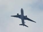 ヒロポンさんが、福島空港で撮影した日本航空 777-246/ERの航空フォト(写真)