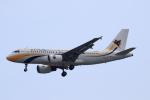 ★azusa★さんが、シンガポール・チャンギ国際空港で撮影したミャンマー国際航空 A319-111の航空フォト(写真)