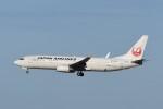 B747‐400さんが、成田国際空港で撮影した日本航空 737-846の航空フォト(写真)