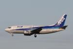 B747‐400さんが、成田国際空港で撮影したANAウイングス 737-54Kの航空フォト(写真)