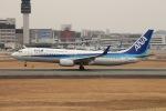 Shiro_ichiganさんが、伊丹空港で撮影した全日空 737-881の航空フォト(写真)
