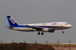 こだしさんが、羽田空港で撮影した全日空 A320-211の航空フォト(写真)