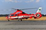 はるかのパパさんが、木更津飛行場で撮影した千葉市消防航空隊 AS365N3 Dauphin 2の航空フォト(写真)