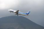 krozさんが、八丈島空港で撮影した全日空 A320-211の航空フォト(写真)