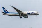 Y-Kenzoさんが、羽田空港で撮影した全日空 787-881の航空フォト(写真)
