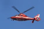 tecasoさんが、大泉緑地で撮影した大阪市消防航空隊 AS365N3 Dauphin 2の航空フォト(写真)