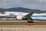 海苔さんが、伊丹空港で撮影した全日空 787-881の航空フォト(写真)