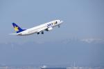 せせらぎさんが、中部国際空港で撮影したスカイマーク 737-8ALの航空フォト(写真)