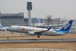 JA7NPさんが、伊丹空港で撮影した全日空 737-881の航空フォト(写真)