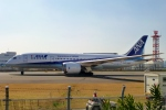 Bluewingさんが、羽田空港で撮影した全日空 787-881の航空フォト(写真)