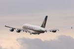 安芸あすかさんが、チューリッヒ空港で撮影したシンガポール航空 A380-841の航空フォト(写真)