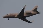 木人さんが、成田国際空港で撮影した不明 Falcon 900LXの航空フォト(写真)