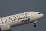 A350XWB-HNDさんが、羽田空港で撮影した全日空 777-281の航空フォト(写真)